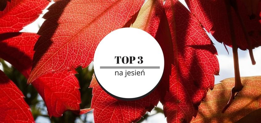 Top 3 na jesień